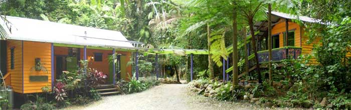 B&B accommodation in the daintree of australia