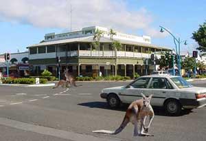 Cairns Casino Restaurants
