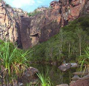 crocodile trap at Jim Jim falls