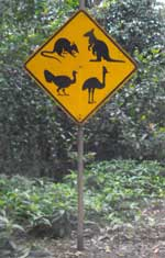 animal warning sign