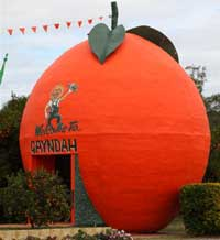 Big orange in Gayndah
