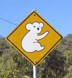 koala warning sign