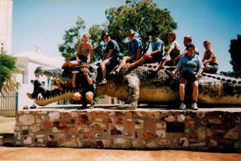 big crocodile picture